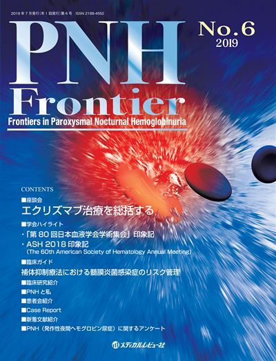 PNH Frontier 2019 No.6